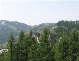 五岳寨自然�L光